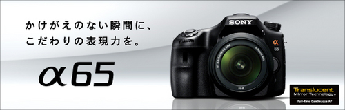 slt-a65.jpg